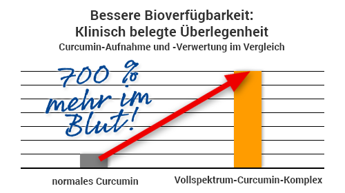 Ultra Curcumin 2800 - Bioverfügbarkeit